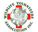Wildlife Volunteers Association Inc. (WILVOS)